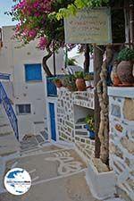 GriechenlandWeb.de Langada Amorgos - Insel Amorgos - Kykladen foto 347 - Foto GriechenlandWeb.de