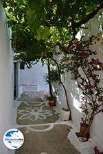 GriechenlandWeb.de Langada Amorgos - Insel Amorgos - Kykladen foto 352 - Foto GriechenlandWeb.de