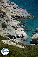 GriechenlandWeb.de Aghia Anna Amorgos - Insel Amorgos - Kykladen foto 475 - Foto GriechenlandWeb.de