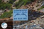 GriechenlandWeb.de Aghia Anna Amorgos - Insel Amorgos - Kykladen foto 487 - Foto GriechenlandWeb.de