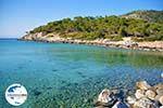 GriechenlandWeb.de Aponissos | Agkistri Griechenland | Foto 7 - Foto GriechenlandWeb.de