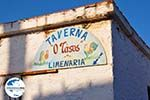 GriechenlandWeb.de Taverna o Tasos in Limenaria | Agkistri Griechenland | Foto 1 - Foto GriechenlandWeb.de