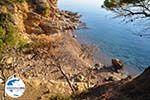 GriechenlandWeb.de Klein zandstrand tussen de dennebomen Skala | Agkistri Griechenland | Foto 2 - Foto GriechenlandWeb.de