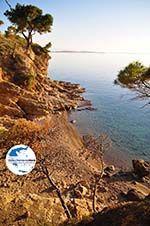 GriechenlandWeb.de Klein zandstrand tussen de dennebomen Skala | Agkistri Griechenland | Foto 3 - Foto GriechenlandWeb.de