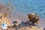 GriechenlandWeb.de Klein zandstrand tussen de dennebomen Skala | Agkistri Griechenland | Foto 5 - Foto GriechenlandWeb.de