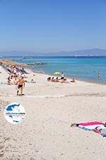 GriechenlandWeb.de Kallithea | Kassandra Chalkidiki | GriechenlandWeb.de foto 4 - Foto GriechenlandWeb.de