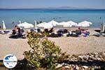 GriechenlandWeb.de Kallithea | Kassandra Chalkidiki | GriechenlandWeb.de foto 19 - Foto GriechenlandWeb.de
