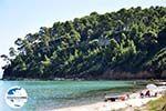 GriechenlandWeb.de Kallithea   Kassandra Chalkidiki   GriechenlandWeb.de foto 22 - Foto GriechenlandWeb.de