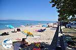 GriechenlandWeb Polichrono | Kassandra Chalkidiki | GriechenlandWeb.de foto 5 - Foto GriechenlandWeb.de