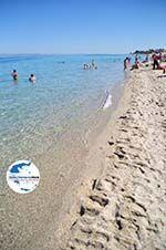 GriechenlandWeb.de Polichrono | Kassandra Chalkidiki | GriechenlandWeb.de foto 13 - Foto GriechenlandWeb.de