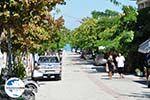 GriechenlandWeb.de Polichrono | Kassandra Chalkidiki | GriechenlandWeb.de foto 16 - Foto GriechenlandWeb.de