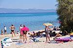GriechenlandWeb.de Chanioti   Kassandra Chalkidiki   GriechenlandWeb.de foto 12 - Foto GriechenlandWeb.de