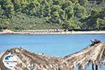 GriechenlandWeb.de Chrousso beach Paliouri | Kassandra Chalkidiki | GriechenlandWeb.de foto 2 - Foto GriechenlandWeb.de