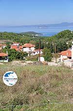 GriechenlandWeb.de Paliouri | Kassandra Chalkidiki | GriechenlandWeb.de foto 1 - Foto GriechenlandWeb.de