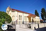 GriechenlandWeb.de Paliouri | Kassandra Chalkidiki | GriechenlandWeb.de foto 8 - Foto GriechenlandWeb.de