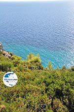GriechenlandWeb.de Loutra Agia Paraskevi | Kassandra Chalkidiki | GriechenlandWeb.de foto 5 - Foto GriechenlandWeb.de