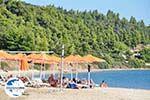 GriechenlandWeb.de Skioni und Nea Skioni | Kassandra Chalkidiki | GriechenlandWeb.de foto 12 - Foto GriechenlandWeb.de