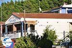 GriechenlandWeb.de Siviri | Kassandra Chalkidiki | GriechenlandWeb.de foto 16 - Foto GriechenlandWeb.de