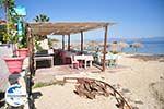 GriechenlandWeb.de Nea Fokea | Kassandra Chalkidiki | GriechenlandWeb.de foto 17 - Foto GriechenlandWeb.de