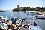 GriechenlandWeb.de Nea Fokea | Kassandra Chalkidiki | GriechenlandWeb.de foto 21 - Foto GriechenlandWeb.de