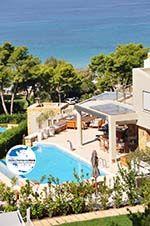 GriechenlandWeb.de Sani | Kassandra Chalkidiki | GriechenlandWeb.de foto 12 - Foto GriechenlandWeb.de