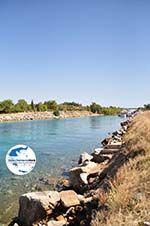 GriechenlandWeb.de Nea Potidea | Kassandra Chalkidiki | GriechenlandWeb.de foto 21 - Foto GriechenlandWeb.de