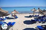 GriechenlandWeb.de Afytos (Athytos) | Kassandra Chalkidiki | GriechenlandWeb.de foto 72 - Foto GriechenlandWeb.de
