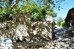 GriechenlandWeb.de Nikiti und Aghios Nikitas Sithonia | Chalkidiki | GriechenlandWeb.de foto 9 - Foto GriechenlandWeb.de
