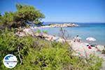 GriechenlandWeb.de Strände und natuur Vourvourou   Sithonia Chalkidiki   GriechenlandWeb.de foto 13 - Foto GriechenlandWeb.de