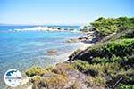 GriechenlandWeb.de Strände und natuur Vourvourou | Sithonia Chalkidiki | GriechenlandWeb.de foto 26 - Foto GriechenlandWeb.de