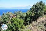 GriechenlandWeb Strände und natuur Vourvourou | Sithonia Chalkidiki | GriechenlandWeb.de foto 34 - Foto GriechenlandWeb.de