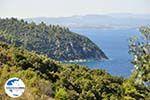 GriechenlandWeb.de Strände und natuur Vourvourou | Sithonia Chalkidiki | GriechenlandWeb.de foto 35 - Foto GriechenlandWeb.de