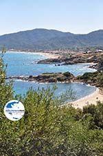 GriechenlandWeb.de Sarti Chalkidiki - Foto GriechenlandWeb.de