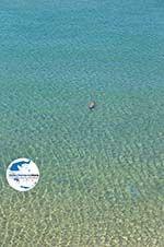 GriechenlandWeb.de Natur und Strände Sykia und Paralia Sykias | Sithonia Chalkidiki | Foto 11 - Foto GriechenlandWeb.de