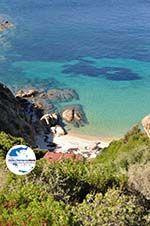 GriechenlandWeb.de Natur und Strände Sykia und Paralia Sykias | Sithonia Chalkidiki | Foto 23 - Foto GriechenlandWeb.de