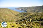 GriechenlandWeb.de Irgendwo zwischen Kalamitsi und Port Koufo | Sithonia Chalkidiki | GriechenlandWeb.de foto 1 - Foto GriechenlandWeb.de