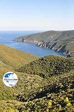 GriechenlandWeb.de Irgendwo zwischen Kalamitsi und Port Koufo | Sithonia Chalkidiki | GriechenlandWeb.de foto 3 - Foto GriechenlandWeb.de