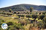 GriechenlandWeb Porto Koufo | Sithonia Chalkidiki | GriechenlandWeb.de foto 2 - Foto GriechenlandWeb.de