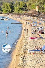 GriechenlandWeb.de Porto Karras | Sithonia Chalkidiki | GriechenlandWeb.de foto 12 - Foto GriechenlandWeb.de