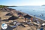 GriechenlandWeb.de Porto Karras | Sithonia Chalkidiki | GriechenlandWeb.de foto 19 - Foto GriechenlandWeb.de