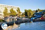 GriechenlandWeb.de Porto Karras | Sithonia Chalkidiki | GriechenlandWeb.de foto 21 - Foto GriechenlandWeb.de