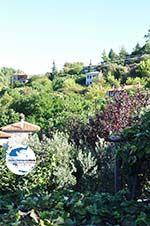 GriechenlandWeb.de Parthenonas | Sithonia Chalkidiki | GriechenlandWeb.de foto 21 - Foto GriechenlandWeb.de