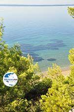 GriechenlandWeb.de Zwischen Psakoudia und Gerakini | Sithonia Chalkidiki | GriechenlandWeb.de foto 8 - Foto GriechenlandWeb.de
