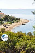 GriechenlandWeb.de Zwischen Psakoudia und Gerakini | Sithonia Chalkidiki | GriechenlandWeb.de foto 9 - Foto GriechenlandWeb.de