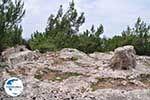 GriechenlandWeb.de Homerus stone Daskalopetra - Insel Chios - Foto GriechenlandWeb.de