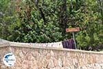 GriechenlandWeb.de Panoramafoto Chios Stadt foto 2 - Insel Chios - Foto GriechenlandWeb.de