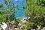Foto Chios Ägäische Inseln GriechenlandWeb - Foto GriechenlandWeb.de
