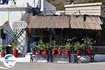 GriechenlandWeb.de Bloempotten visrestaurant Emborios - Insel Chios - Foto GriechenlandWeb.de