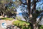 Het zwarte kiezelstrand van Emborios - Insel Chios - Foto GriechenlandWeb.de
