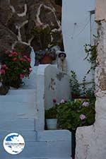 GriechenlandWeb Chora Ios - Insel Ios - Kykladen Griechenland foto 99 - Foto GriechenlandWeb.de
